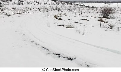 snow field and trees top view from quadcopter