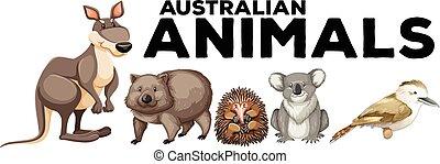 Wild animals from australia illustration