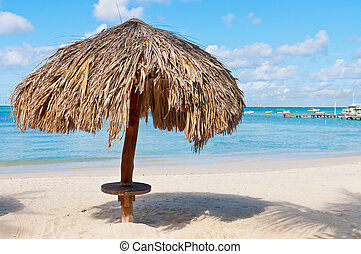 Rest Area and Palapa - Beach on the island of Aruba