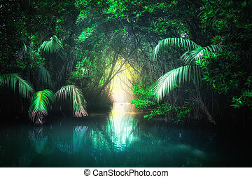 Tropical lake in mangrove rain forest. Sri Lanka - Fantasy...