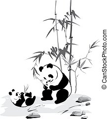 Panda and baby eat a bamboo - A panda and baby eat a bamboo