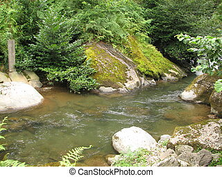 Mountain river flowing among mossy stones in the forest....
