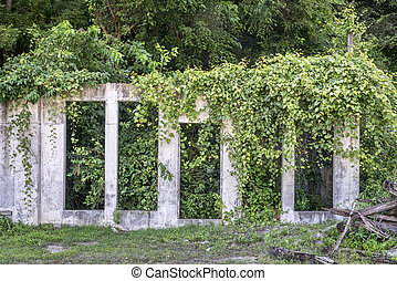 building ruins and vegetation - ruins of concrete building...