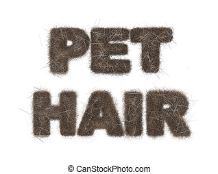 Pet Hair Text Illustration on White - Text reading Pet Hair...