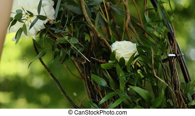 Female hands touching petals of white roses in bud in park,...