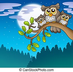 Cute owls on branch at night - color illustration.