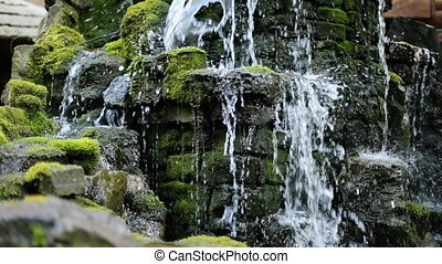 Little Waterfall in Forest, Moss Covered Rocks