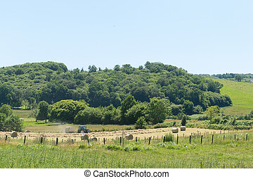 Landscape in France - Agricultural Landscape in French...