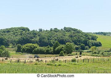 Landscape in France - Agricultural Landscape in French...