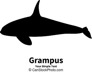 Vector illustration silhouette of killer whales