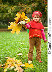 little girl collect maple leafs In park in autumn