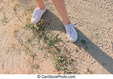 female legs in white sneakers - on the sand with grass...