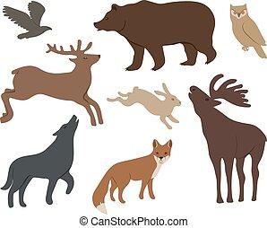 wild forest animals - Collection of wild forest animals...