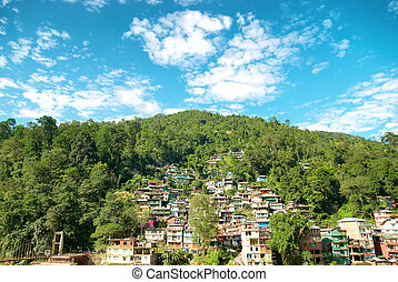 Houses in a town on green hill. India, Sikkim, Gangtok