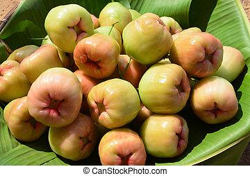 """Rose apple - """"Chompoophet"""" thai name, Rose apple. (Eugenia..."""