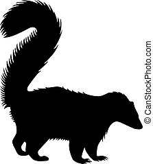 Skunk, shade picture