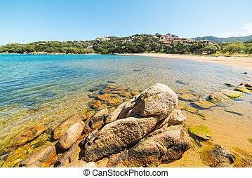 liscia di vacca beach in Costa Smeralda, Italy
