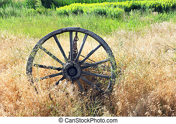 Old West Wheel - Antique, wooden wagon wheel lies overgrown...