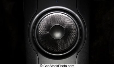 professional studio subwoofer speaker isolated - Closeup...