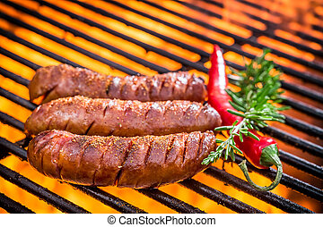 Hot sausage on the grill with fire