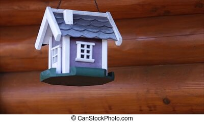 colorful bird house on grunge background.