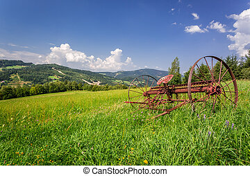 Ancient rake in a field in summer