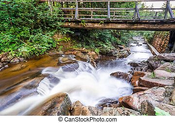 Mountain stream and an old wooden bridge