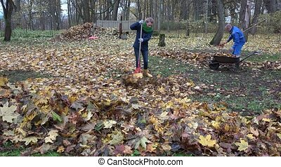 Woman rake leaves. Man load barrow cart and carry with...