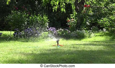 Sprinkler watering tool spray water drops squirt on garden lawn and flowers. 4K