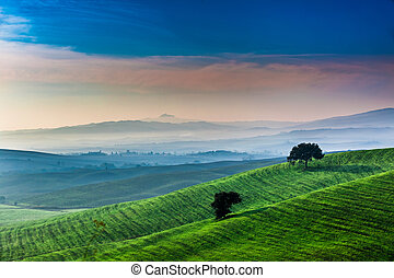 Sunrise over a green valley in Tuscany