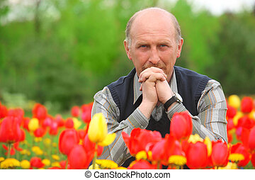 man sits on tulips field