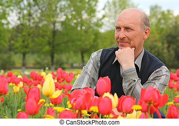 middle-aged  man among blossoming tulips