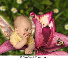 bebé, orquídea, mariposa, collage