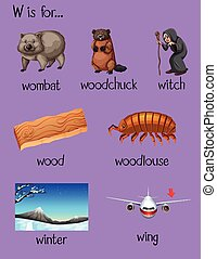 Many words begin with letter W illustration