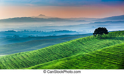 Sunrise of dreamland in Tuscany