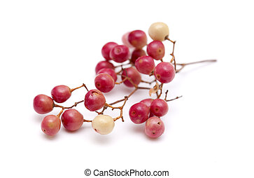 pink peppercorn clusters isolated on white background