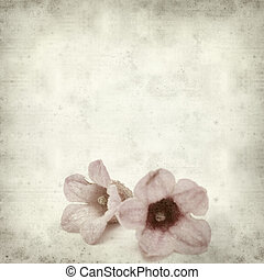 textured old paper background with pink flowers of...