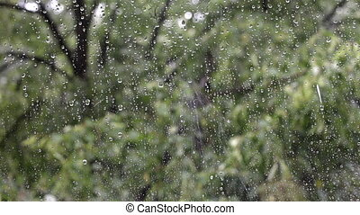 rain drops falling on a window. - rain drops falling on a...