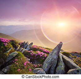 Summer landscape with a beautiful sunrise and mountain...