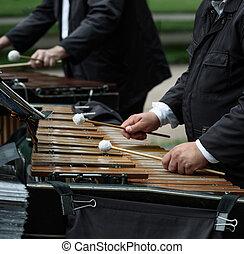 fim, xilofone, músico, cima, tocando