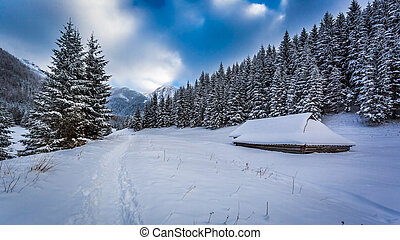 Snowy trail at the mountain peak