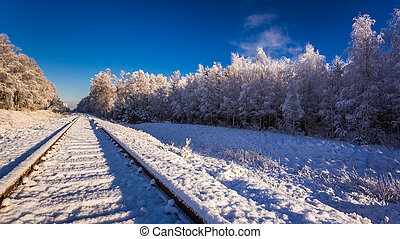 Frozen in winter railway line between forests
