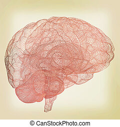 Creative concept of the human brain. 3D illustration....
