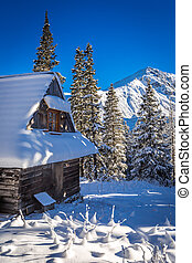 Snowy mountain hut in the mountains