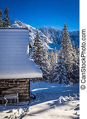 madeira, chalé, em, Inverno, montanhas