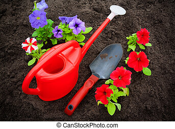 Red and purple petunia flowers with watering can and shovel on soil