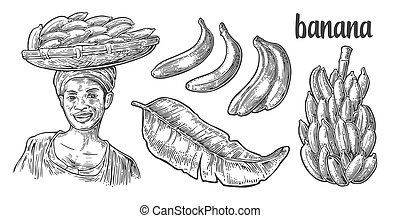 Two single and bunches of fresh banana with leaf. African...