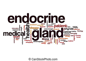 Endocrine gland word cloud concept - Endocrine gland word...