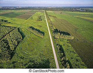 農地, 航空写真, 道, 光景
