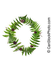 frame of fern - wreath with fern leaves and cone pine over...